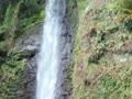 「養老の滝」